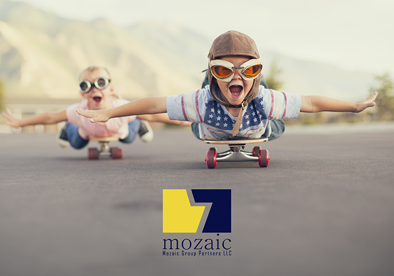 Profile Performance Flying Mozaic Group Partners